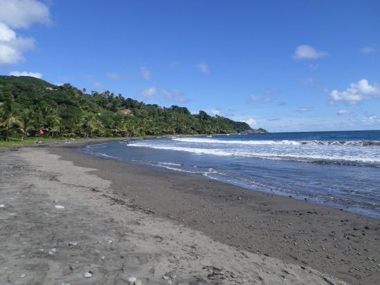 Pepper's Tours : Beautiful black sand beach