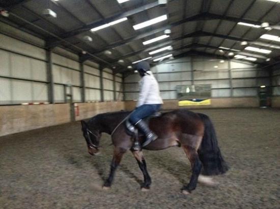 Crieff Hydro Riding Centre: Indoor arena