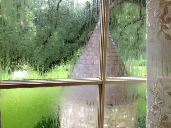 Bocage Plantation: Rainy Day