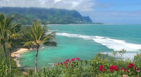 Surf Swim Sunbathe Or Build A Sandcastle You Ll Have