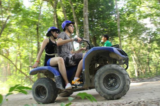 Discovery Jungle Park : atv
