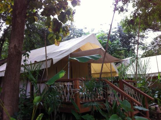 Hintok River Camp : The accommodation
