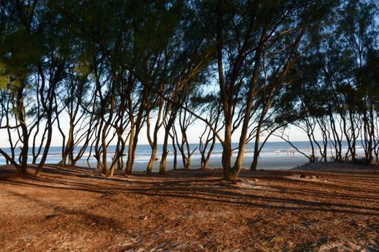 Osorio, RS: Sombra na beira da praia.