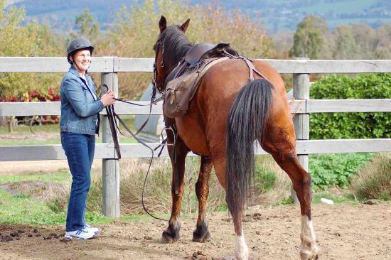 Bogong Horseback Adventures: Saddle up 2