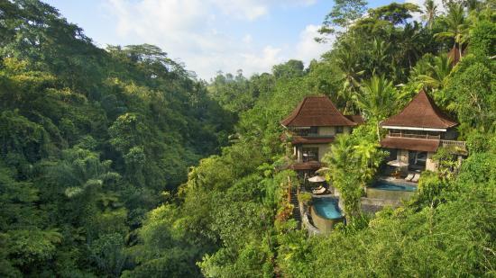 Bidadari Private Villas & Retreat : Amazing views
