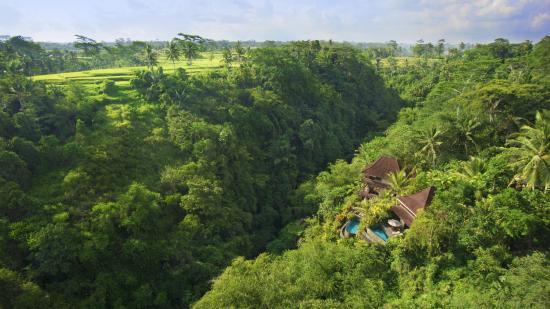 Bidadari Private Villas & Retreat : Views over the Ubud valley