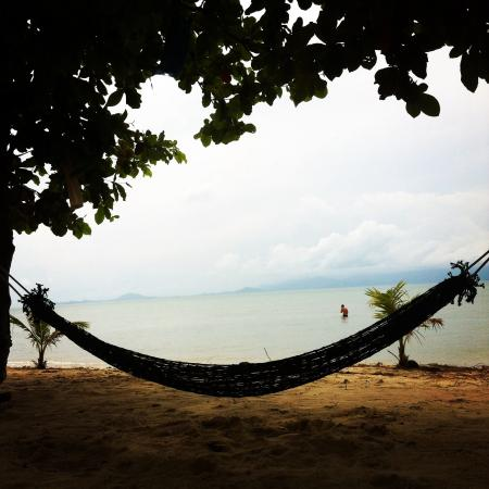 Dancing Elephant Beach Club: Hammock on the beach