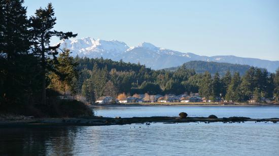 Pacific Shores Resort and Spa: View of the mountains from the beach