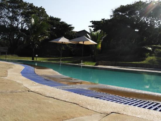 Coral Beach Resort : The pool
