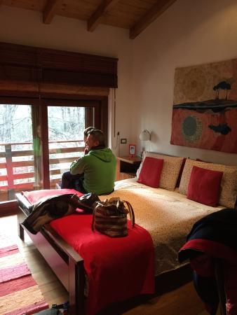 Bed and Breakfast La Casa nel Bosco : La camera