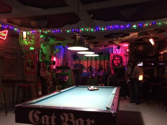 Cat Bar: Pool Table With Owner Jamming In The Background.