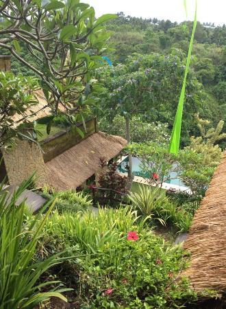Landscape-Anhera Suites, Ubud