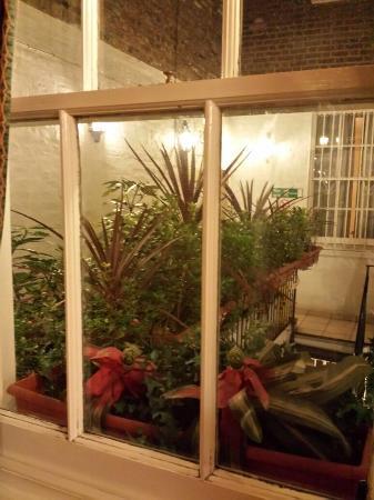 Nayland酒店照片