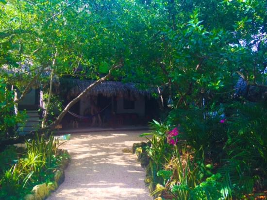 Yoga Shala Tulum: Bottom floor rooms
