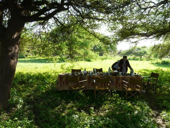 Campi ya Kanzi : Bush breakfast
