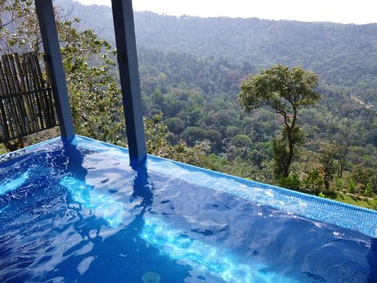 Pool Villa Private Infinity Pool On Balcony Picture Of Spicetree Munnar Chinnakanal