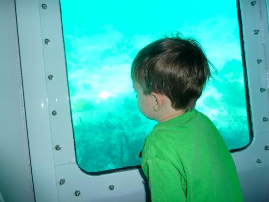 Undersea Explorer: Wow, Mom, this is cool!