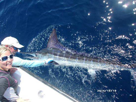 Nosara Paradise Rentals: My first striped marlin!