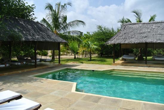 Kizingoni Beach: Pool with swinging beds