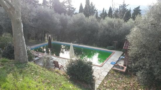 Podere Borgaruccio: La piscina