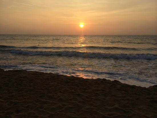Seafood Cove : Amazing sunsets to enjoy