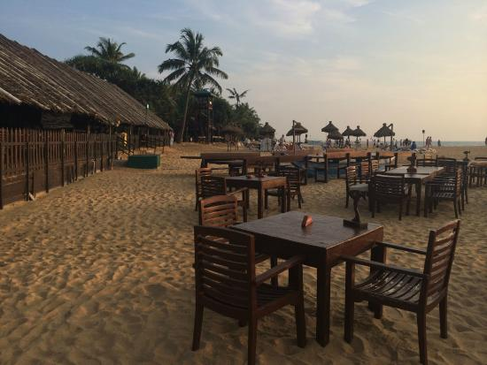 Seafood Cove : Ask for table on the sand...