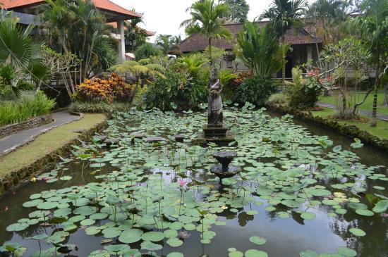 Museum Puri Lukisan: Lotus Pond