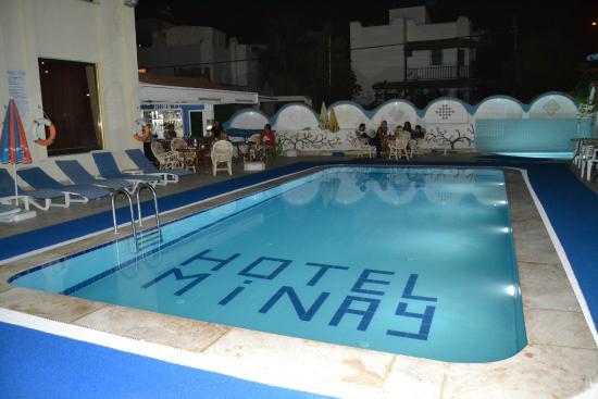 Hotel Minay: Pool bar area