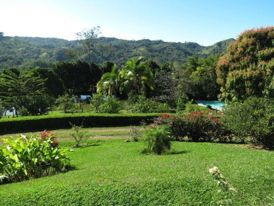 Las Alturas de Puriscal: The grounds immediately behind the B&B