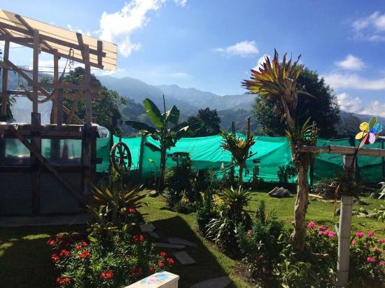 Hostal Casa del Loro : El jardín de tu casa.