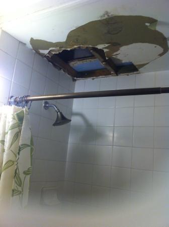 Polynesian Hostel Beach Club: Beware bathroom ceiling hole