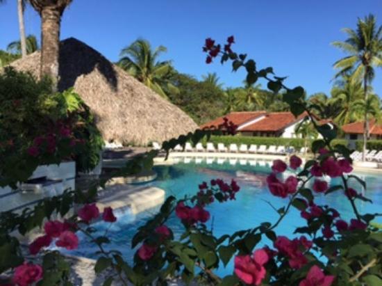 Hotel Villas Playa Samara: Pool Area