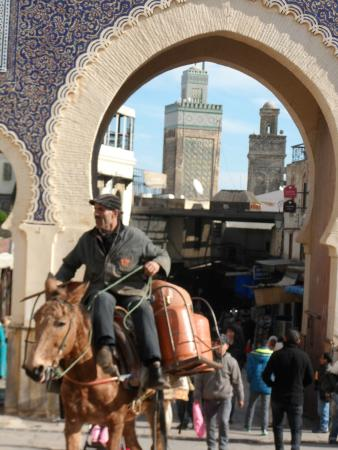 Authentic Morocco: Gate to Medina in Fez
