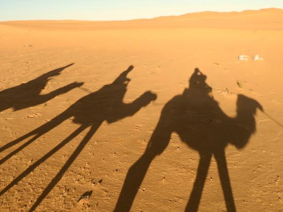 Authentic Morocco: Sunset Camel Ride