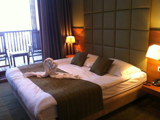 Hotel Balnea Superior: camera