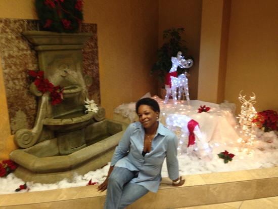 Ramada Jacksonville/Baymeadows Hotel & Conference Center: Wonderland Ramada