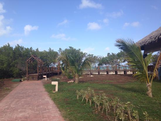 Resort picture of melia jardines del rey cayo coco for Jardines del rey cuba