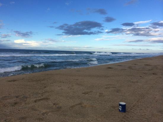Playa Viva: Glorious Xmas morning