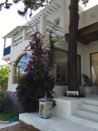 Kala Hotel Boutique: Flores na entrada