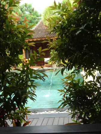 Villa Berawa : View from our verandah