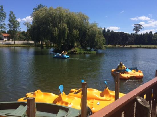 Kids On The Paddle Boats At One Of The Lakes