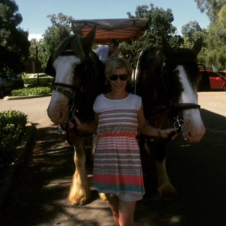Hunter Valley Classic Carriages: The adorable Clarry and Fred with our driver Sally photo bombing :-)