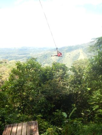 Osa Canopy Tour : tarzan swing
