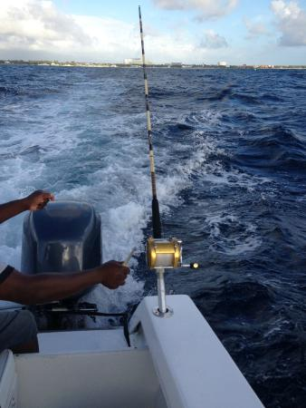 Island Life Tours Day Tours: Fish On