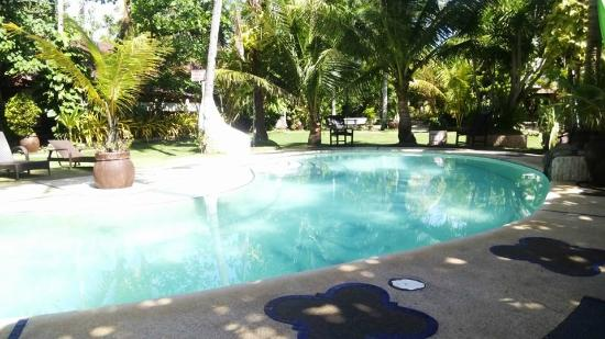 Cebu Marine Beach Resort: Pool