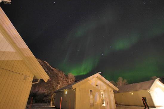 Tromso Camping: Northern lights outside my cottage