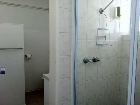 Adina Place City View Apartments: Good hot water pressure in bathroom