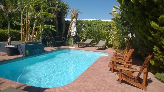 Malherbe Guesthouse: Pool im Garten