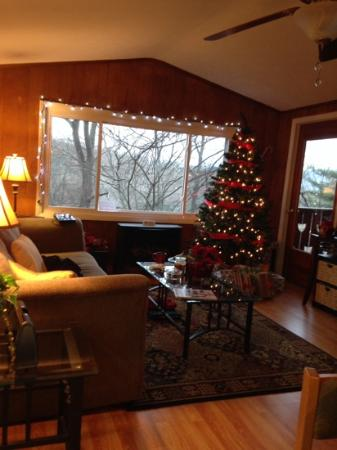 Asheville Swiss Chalets: The Interlaken at Christmastime.