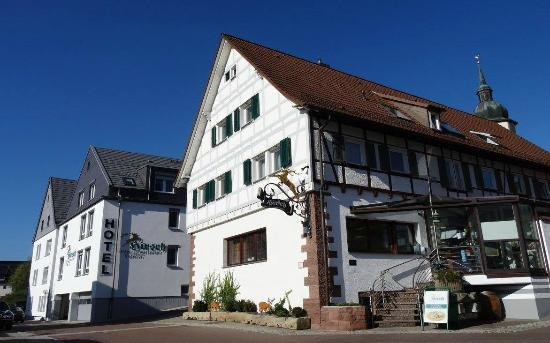 Singles rutesheim